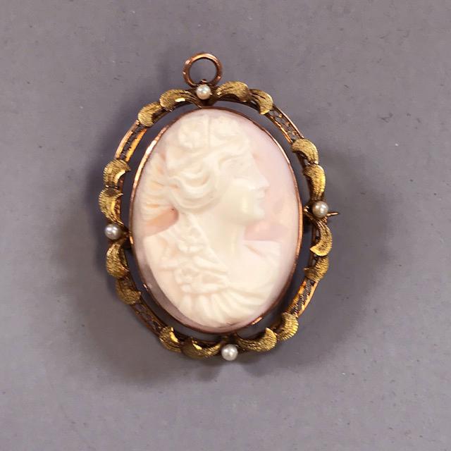 Edwardian 10k pink conch shell cameo brooch morning glory jewelry edwardian aloadofball Choice Image