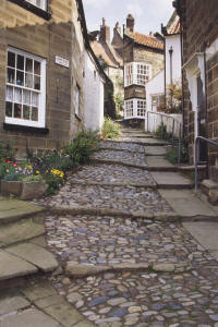 Bay Town Cobbled Alley